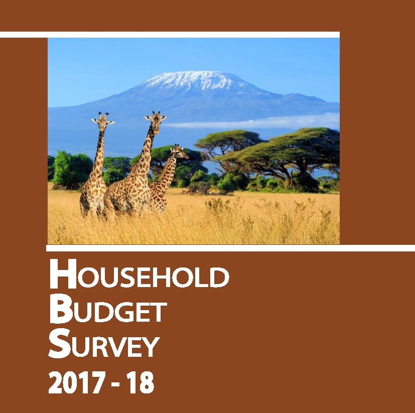 Tanzania household budget survey cover