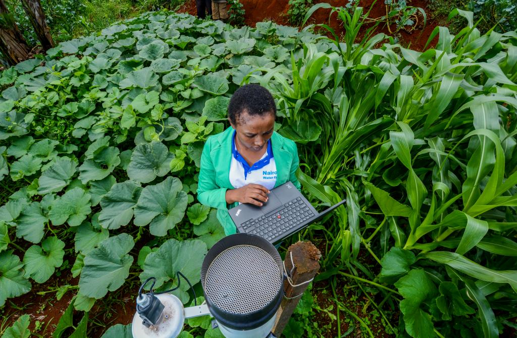 Jane Gicheha collecting rainwater data on the farm.