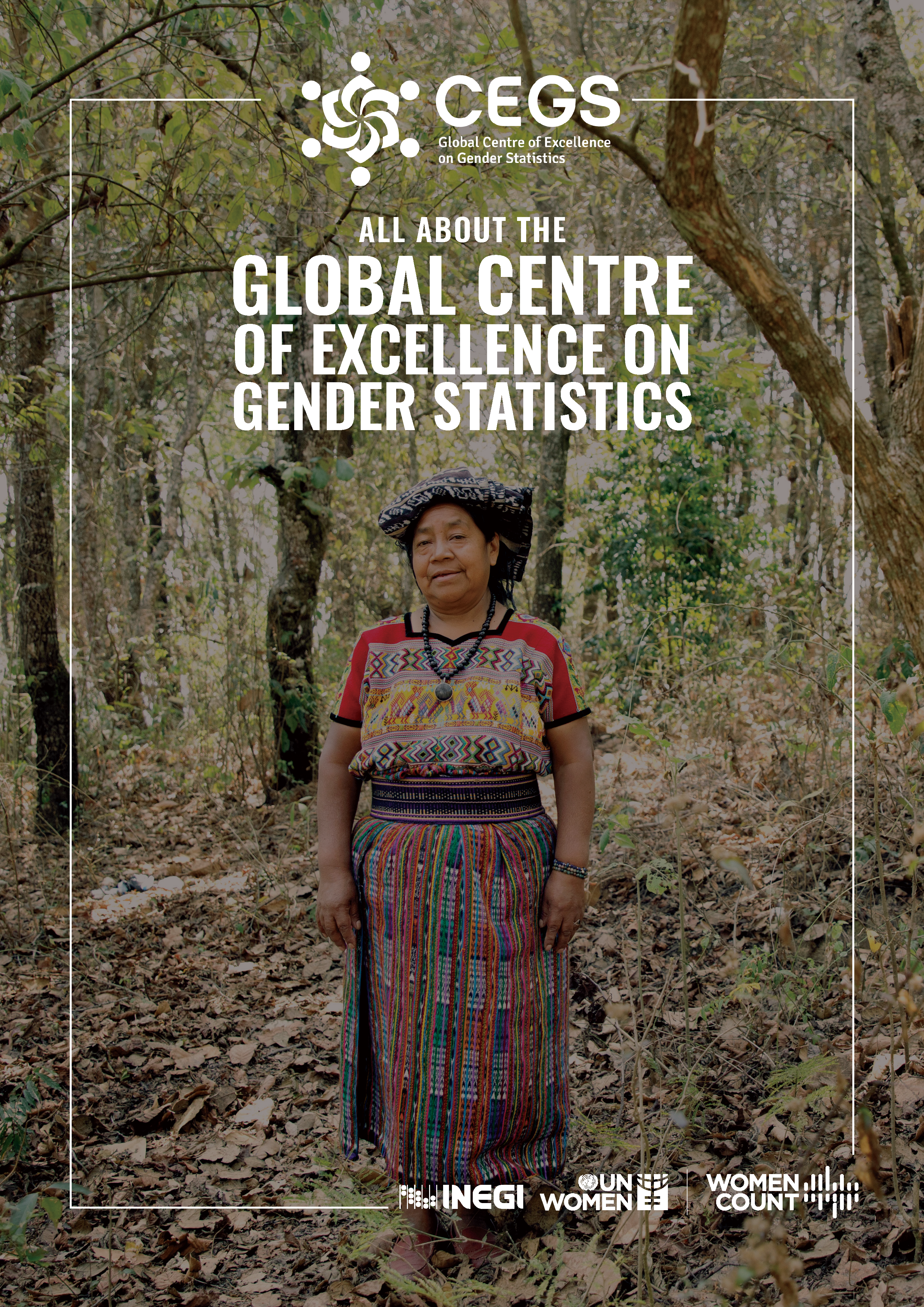 Factsheet: The Global Centre of Excellence on Gender Statistics