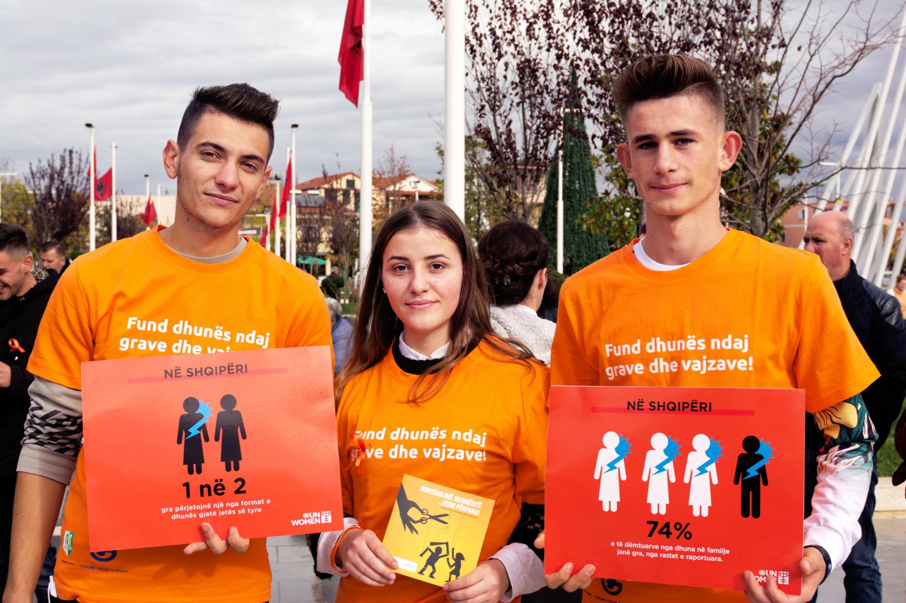 Improved data on violence against women catalyses advocacy and legal change in Albania