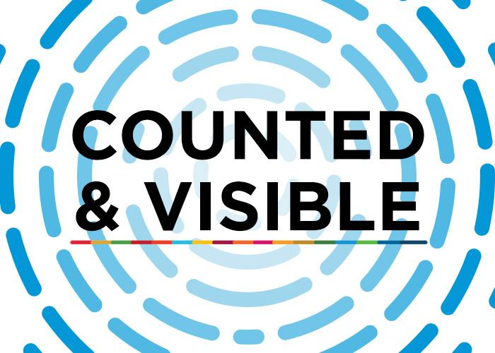 Counted and Visible toolkit